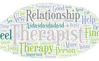 Psychotherapy relationships that work